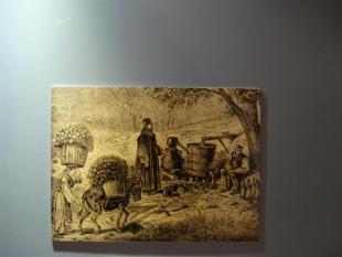 pridobivanje ro�nega olja v srednjem veku